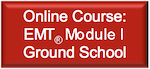 Online Course: Module I Ground School